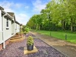 Thumbnail for sale in Avenue One, Meadowlands, Addlestone