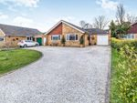 Thumbnail for sale in Birch Close, New Barn, Longfield