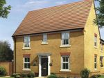 "Thumbnail to rent in ""Hadley"" at Halse Road, Brackley"
