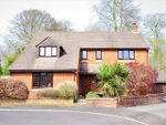 Thumbnail for sale in Old Oak Way, Winterborne Whitechurch, Blandford Forum, Dorset