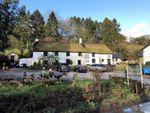 Thumbnail for sale in Cridford Inn, Trusham, Newton Abbot, Devon