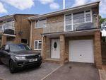 Thumbnail for sale in Henbury Rise, Corfe Mullen, Wimborne, Dorset