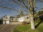 Thumbnail for sale in Pwllmeyric Close, Pwllmeyric, Chepstow