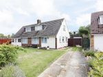 Thumbnail for sale in Ashwood Close, Broadwater, Worthing