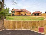 Thumbnail to rent in Bullace Bush Lane, Blofield, Norwich