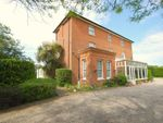 Thumbnail for sale in Hall Road, Asheldham, Southminster