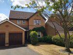 Thumbnail for sale in Campanula Close, Abington Vale, Northampton