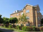 Thumbnail to rent in Hoddinott Road, Eastleigh