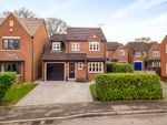 Thumbnail for sale in Maple Drive, Aston-On-Trent, Derby