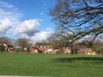 Thumbnail to rent in Orchard View, Halberton, Tiverton