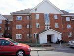 Thumbnail to rent in Elmshurst Crescent, London