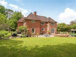 Thumbnail for sale in Baring Road, Winchester, Hampshire