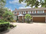 Thumbnail for sale in Prowse Avenue, Bushey Heath, Hertfordshire