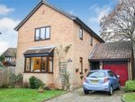 Thumbnail for sale in 7 Overton Shaw, East Grinstead, West Sussex