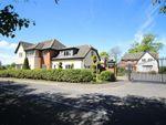 Thumbnail to rent in Grimsargh Manor, Grimsargh, Preston