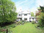 Thumbnail to rent in Chestnut Grove, Mapperley Park, Nottingham