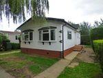 Thumbnail for sale in Wallow Lane, Great Bricett, Ipswich