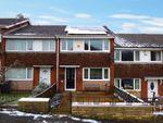 Thumbnail to rent in Dawlish Close, Livesey, Blackburn