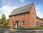 "Thumbnail to rent in ""Hatton"" at Callow Hill Way, Littleover, Derby"