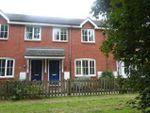 Thumbnail to rent in Gurdon Road, Grundisburgh, Woodbridge