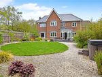 Thumbnail for sale in Pinewood Crescent, Hermitage, Thatcham, Berkshire