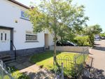 Thumbnail to rent in Myrtle Square, Bishopbriggs, Glasgow