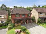 Thumbnail for sale in Barnett Lane, Lightwater