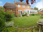 Thumbnail for sale in Westmarch, South Woodham Ferrers, Essex