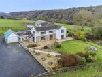 Thumbnail for sale in Glanduad Fach, Velindre, Crymych, Pembrokeshire