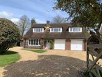 Thumbnail for sale in Ham Manor Close, Angmering, West Sussex