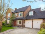 Thumbnail for sale in Walnut Drive, Wendover, Aylesbury
