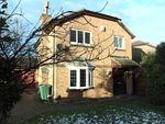 Thumbnail to rent in Paddock Road, Singleton, Ashford