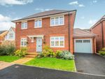 Thumbnail for sale in Abberley Hall Road, Newport