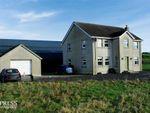 Thumbnail for sale in Carnalroe Road, Ballyward, Castlewellan, County Down