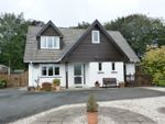 Thumbnail for sale in North Road, Lampeter