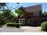 Thumbnail to rent in Wood Way, Braintree