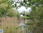 Thumbnail for sale in Shepreth, Cambridgeshire