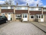 Thumbnail for sale in Shrubland Close, Southampton