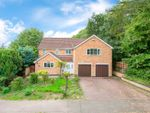 Thumbnail for sale in Forest Glade, Kettering