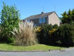 Thumbnail for sale in Cherry Hill Close, Worlingham, Beccles