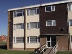 Thumbnail to rent in Harlow Crescent, Stockton-On-Tees