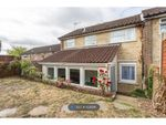 Thumbnail to rent in Alyssum Walk, Colchester