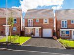 "Thumbnail to rent in ""Tavistock"" at Lytham Road, Warton, Preston"