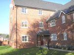 Thumbnail to rent in Millbrook Gardens, Blythe Bridge, Stoke-On-Trent