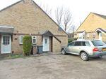 Thumbnail to rent in Blyford Way, Felixstowe