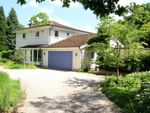 Thumbnail for sale in Birch Grove, Lake View Road, Felbridge, West Sussex