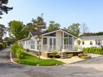 Thumbnail for sale in Monterey Close, West Parley, Ferndown