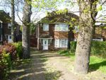 Thumbnail to rent in Dunstable Road, L & D Borders Area