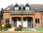 Thumbnail for sale in De Burgh Close, Broxbourne