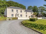 Thumbnail to rent in Maes Y Prior, St. Peters, Carmarthen, Carmarthenshire
